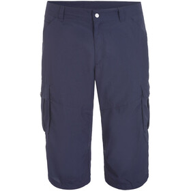 Icepeak Ep Ardoch Shorts Men, dark blue